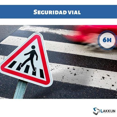 curso seguridad vial
