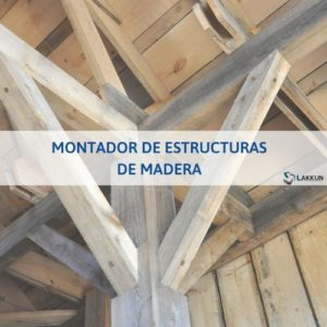 curso tpc estructuras de madera