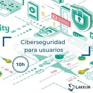 ciberseguridad online